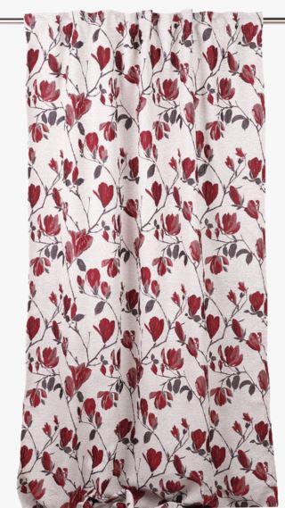 Red Magnolia gardin röd